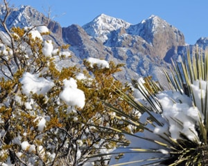 The Organ Mountains (Photo by Heath Haussamen)